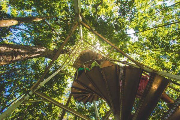 Canopy Walkway Savai'i